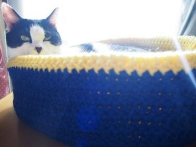 アクリル毛糸 手編み 猫用 ベッド