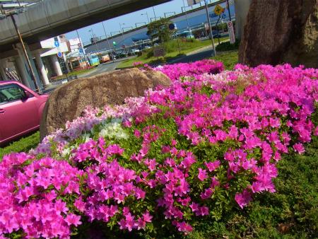 syukusyo-RIMG0954.jpg