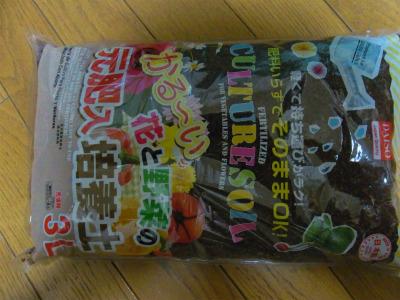 syukusyo-RIMG1065.jpg