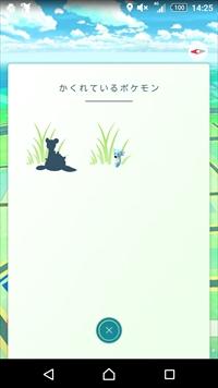 ポケモン探しの旅 (1)