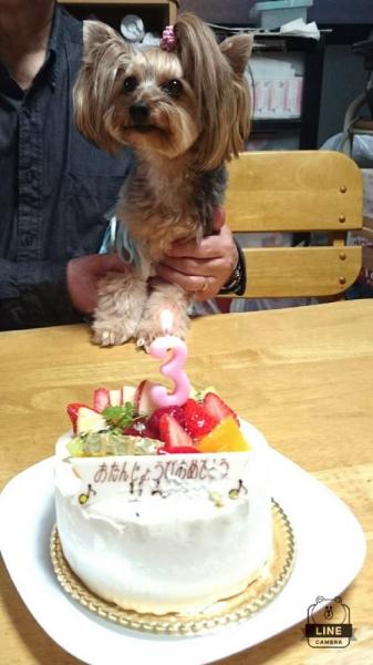 凜ちゃん3歳おめでとう