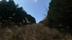 20161210明神ヶ岳4