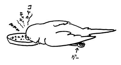 160502-2.jpg