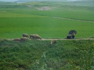 北朝鮮_128