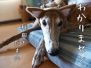 1610271_201610262147391f1.jpg