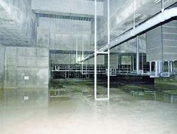 豊洲新市場建物地下