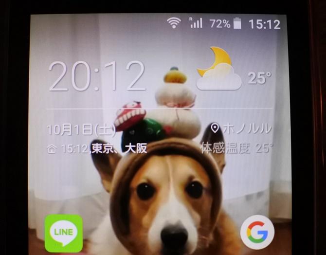 DSC_3219.jpg
