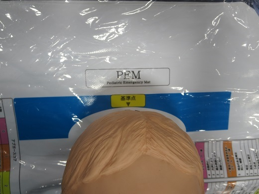 PEM.jpg