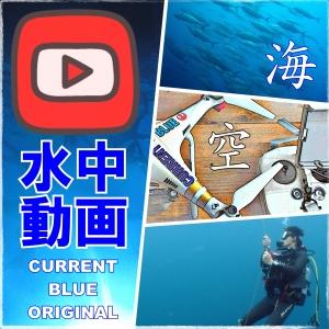 カレントブルーのダイビング動画