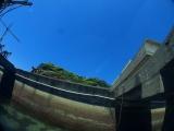 勝浦志村ビーチ (8)