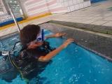 子供体験ダイビング市川千葉 (3)