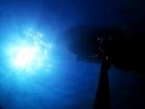 161103西川名ダイビングカレントブルー (6)
