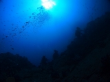 雲見沖の根 (9)