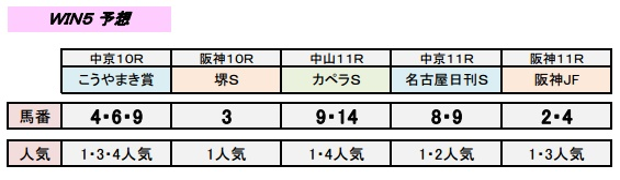 12_11_win5.jpg