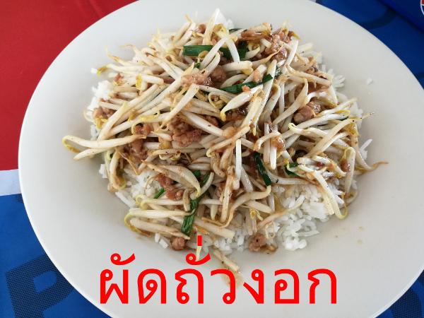 ผัดถั่วงอก タイ料理メニュー