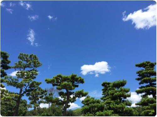 青空 晴れ