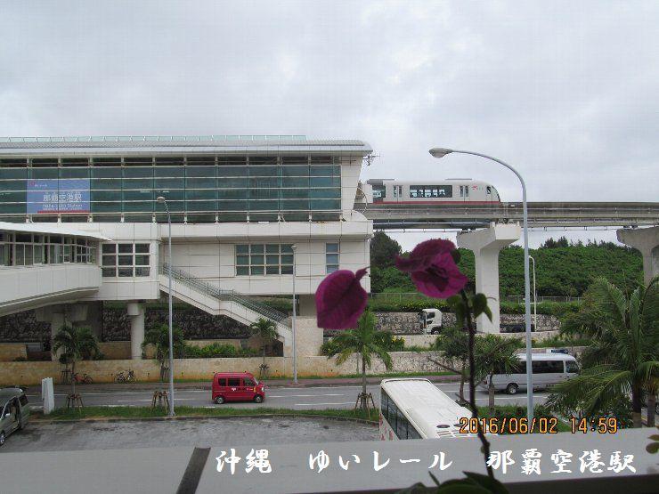 20160602oki18.jpg