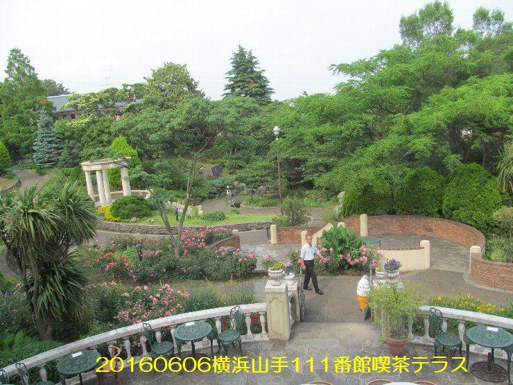 20160606eyi08.jpg