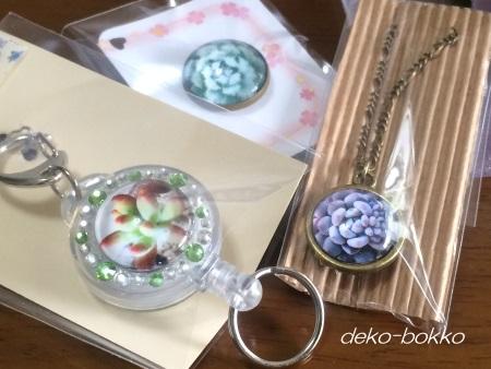satommyちゃんから 多肉アクセサリー 201605