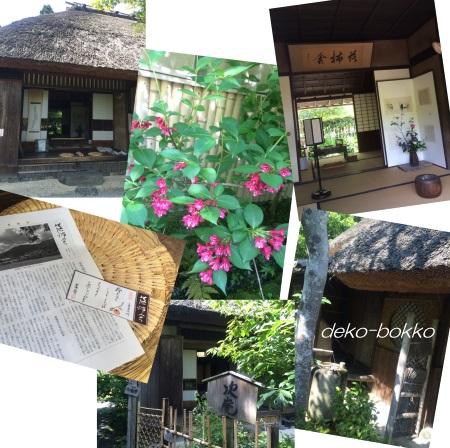 落柿舎 201605