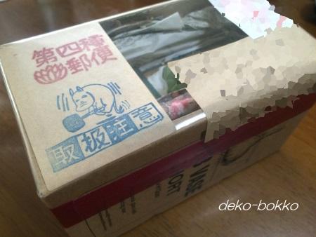 碧魚蓮 トト報告 20160610-3