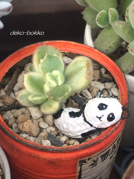 ろみたん ピーナッツ人形 パンダ 201612