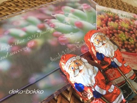 多肉カレンダー サンタチョコ 201612