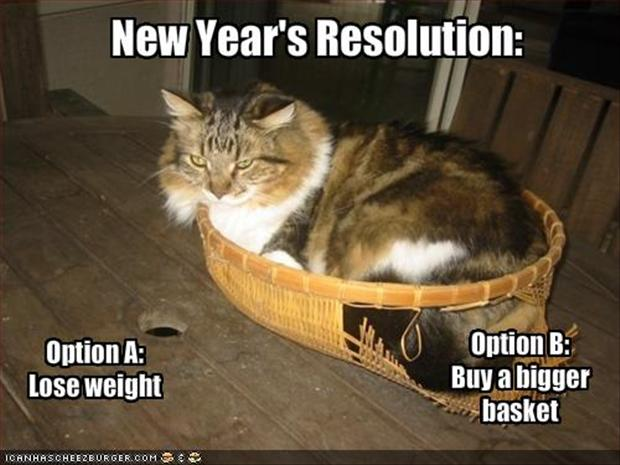 1227Funny-new-years-resolutions-fat-cat