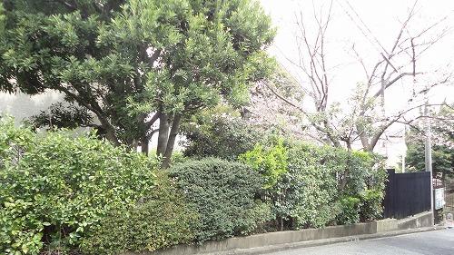 gennba0814_2016_17.jpg