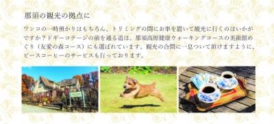 doggy-2-1-1.jpg