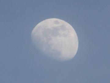 P1370136-1.jpg