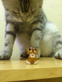 猫 ビーズ 2