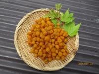 キイチゴ (2)