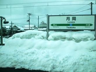 shibata5.jpg