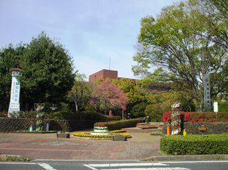 tatebayashi12.jpg