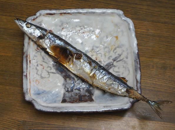 20161017 秋刀魚 21㎝ DSC08335