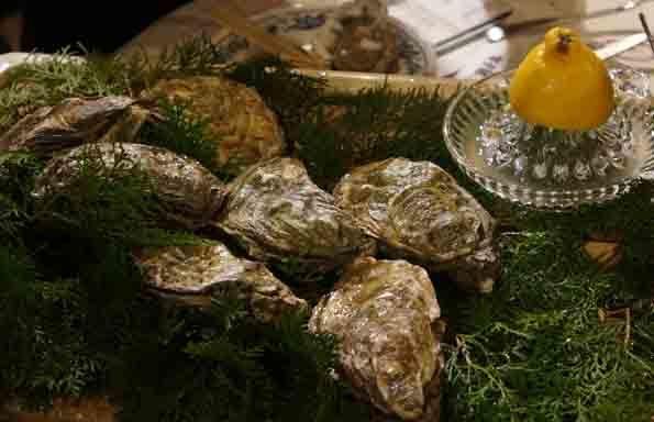 20161218 Woodstock oyster 21cm DSC02052