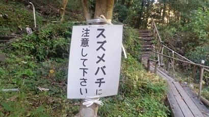 20161118_120147.jpg