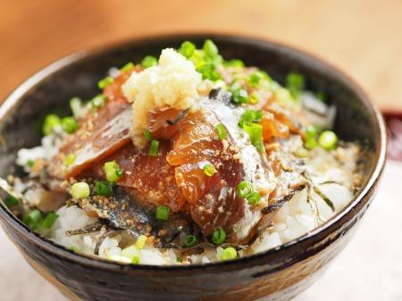 アジのりゅうきゅう丼10