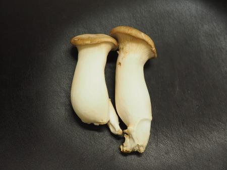 エリンギと豆腐のオイスターソー01