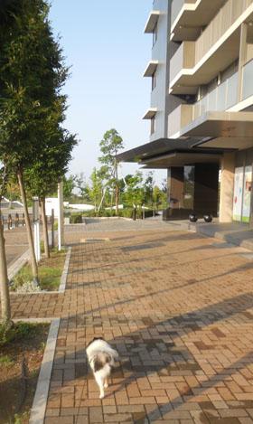 DSCN7419.jpg