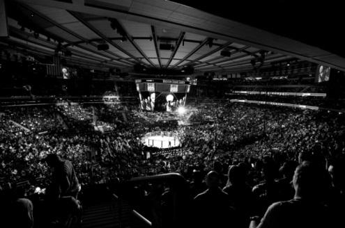 UFC205.jpg
