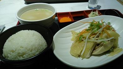 DSC_0098海南鶏