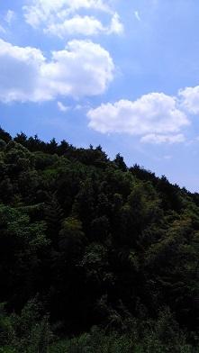 DSC_0123山空