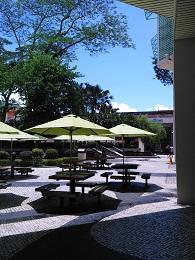 DSC_0091 (1)ディスカバリーベイ緑傘