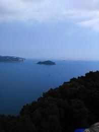 DSC_0365海洋公園 海