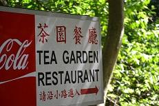 茶園(S)