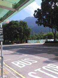 DSC_0163 (2)bus