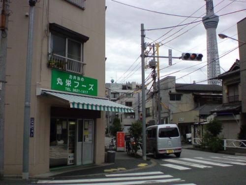 photo610-29-01.jpg