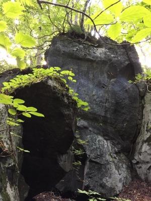 十和田神社19